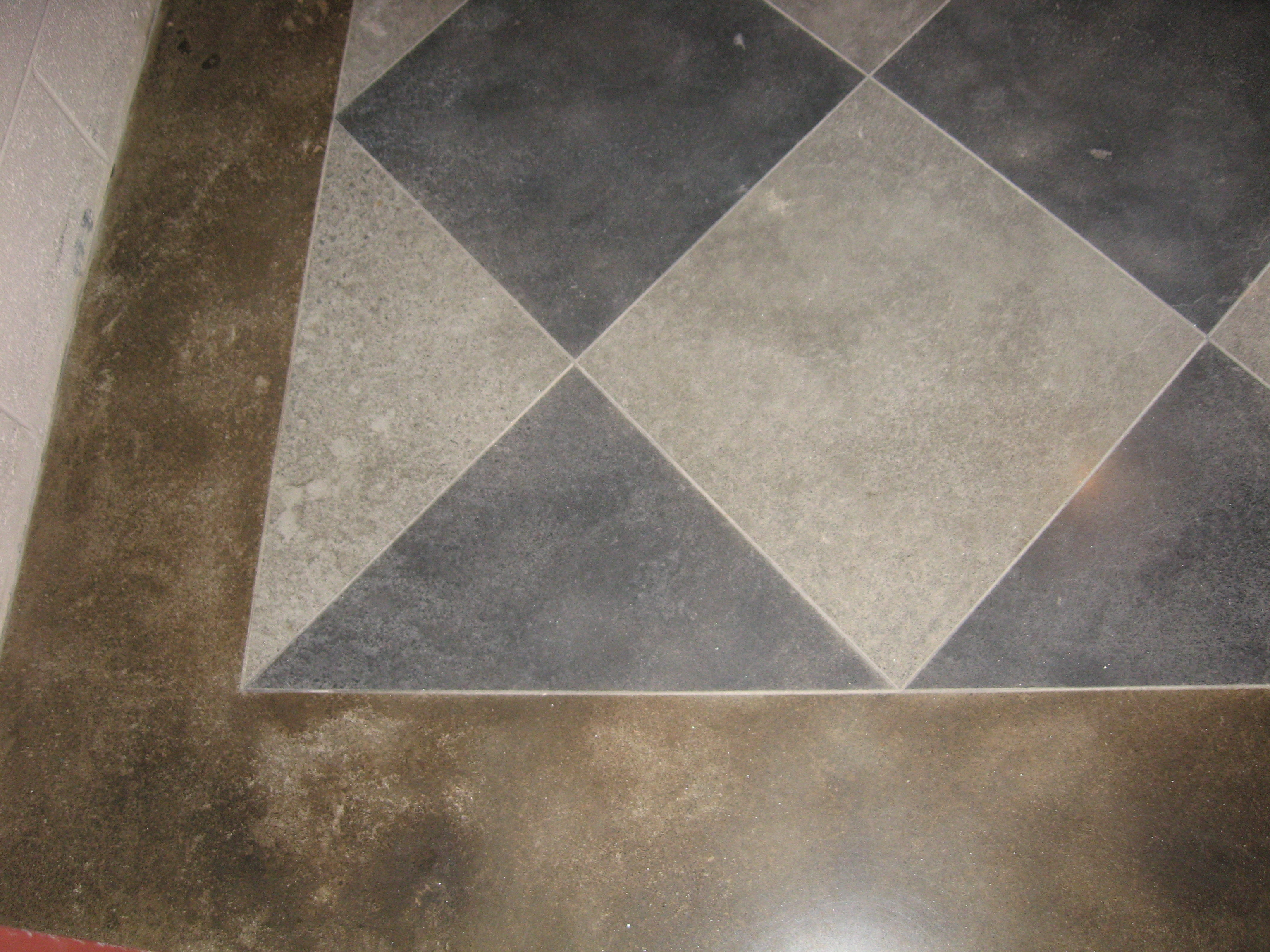 Decorative Polished Concrete  / Animal Patrol / Carrollton, GA